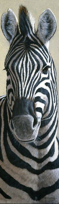 Zebra acrylic painting by Jeremy Paul - Animal / Wildlife artwork.
