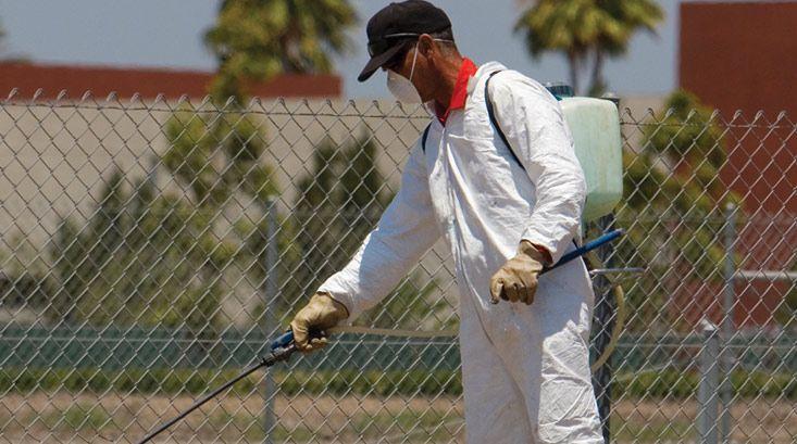 How to Manage Pests, Pesticide Information, Hiring a Pest Control Company