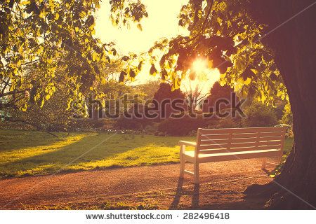 Stock Images similar to ID 315819374 - urban park