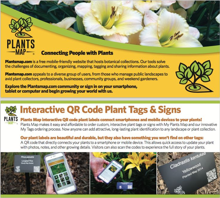 90 best Plants Map About Us images on Pinterest Maps, Location - best of free online world map creator