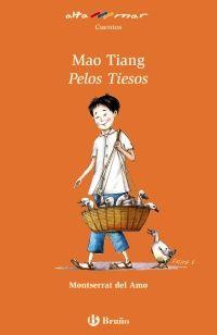 La princesa Yin Li busca marido. Mao Tiang Pelos Tiesos, un joven cuidador de patos, es el más humilde, torpe y despistado de todos los aspirantes… aunque de espíritu optimista, valiente y generoso que puede sorprendernos...
