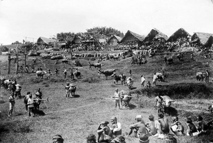 Old Photo of Livestock Market Toraja, Indonesia.