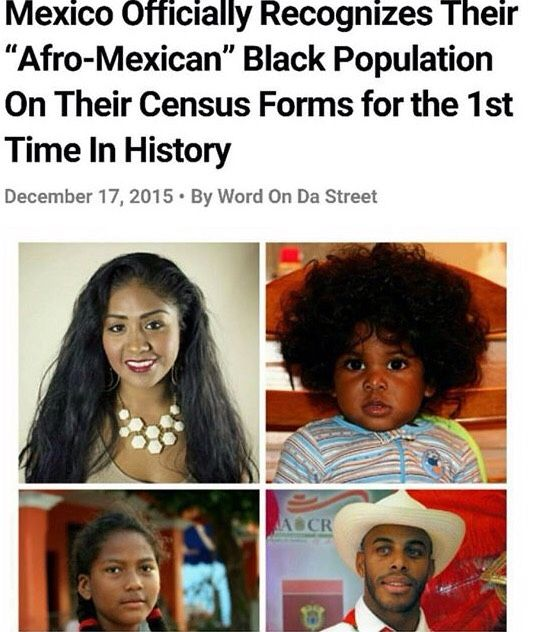 nientiend0:  vegan-meth:  They recorded 1.3 million people of African descent which is about 1.2% of the population. Proud to see my people getting recognized. Que viva la gente AfroMexicanx!  the fact it took so long is fuckin embarrassing