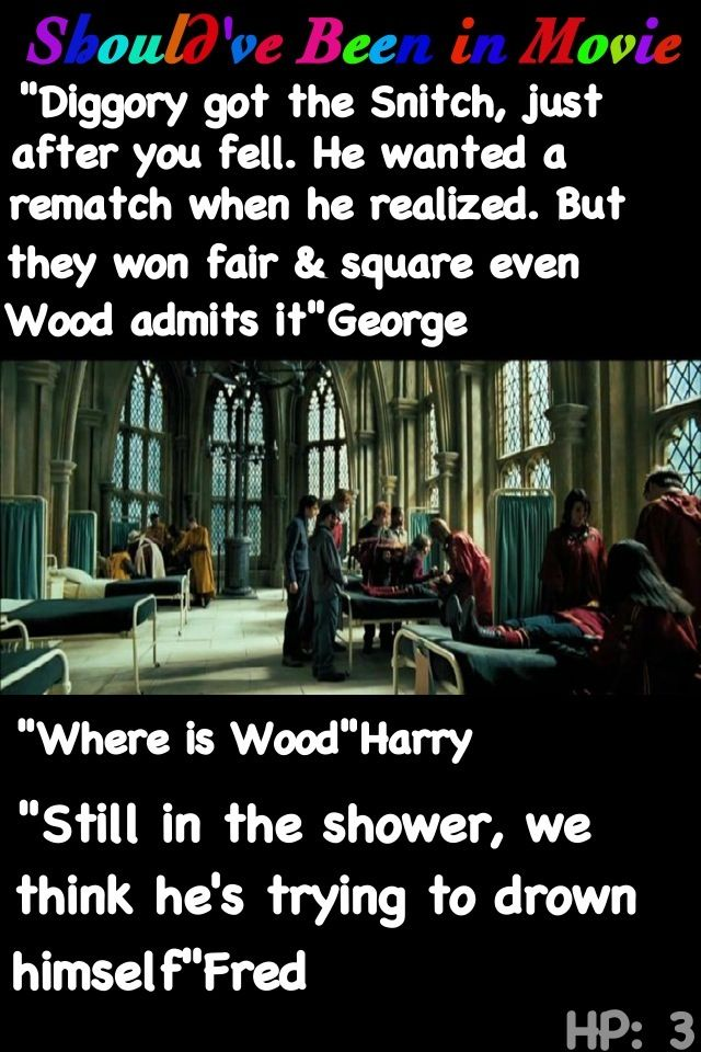 Harry Potter and the Prisoner of Azkaban  Should've Been in Movie George Cedric Diggory Harry Fred Oliver Wood funny.