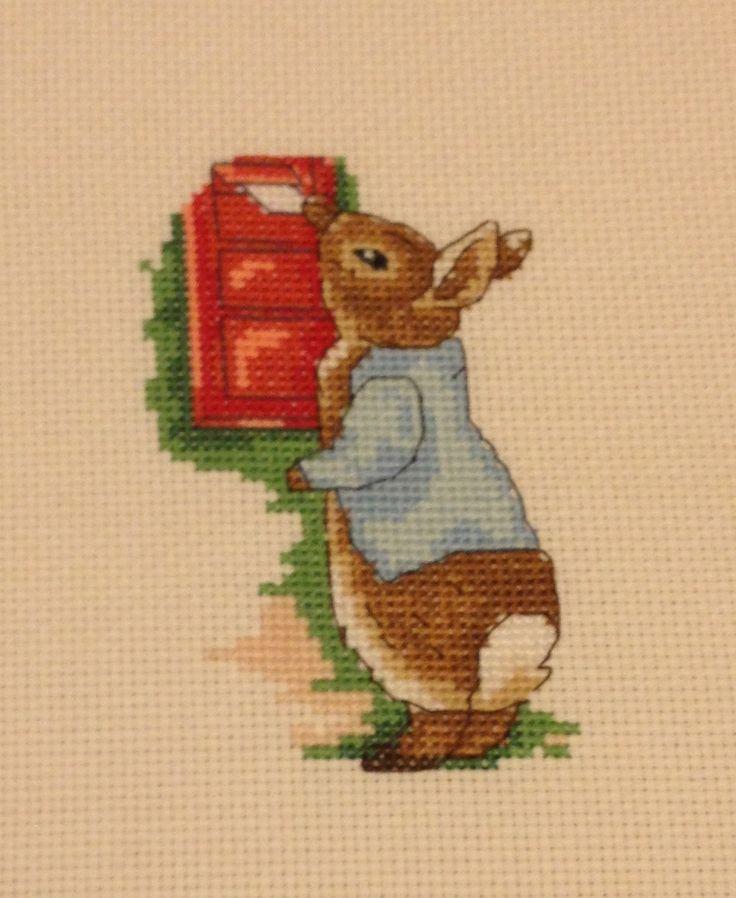 Finished Peter Rabbit cross stitch