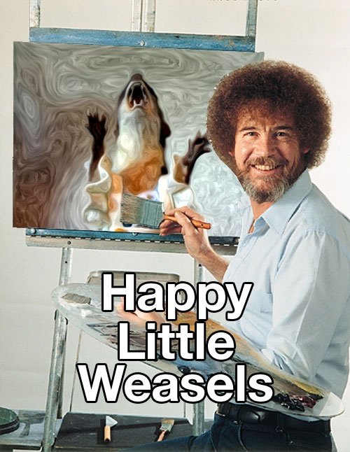 Image result for you are a weasel meme