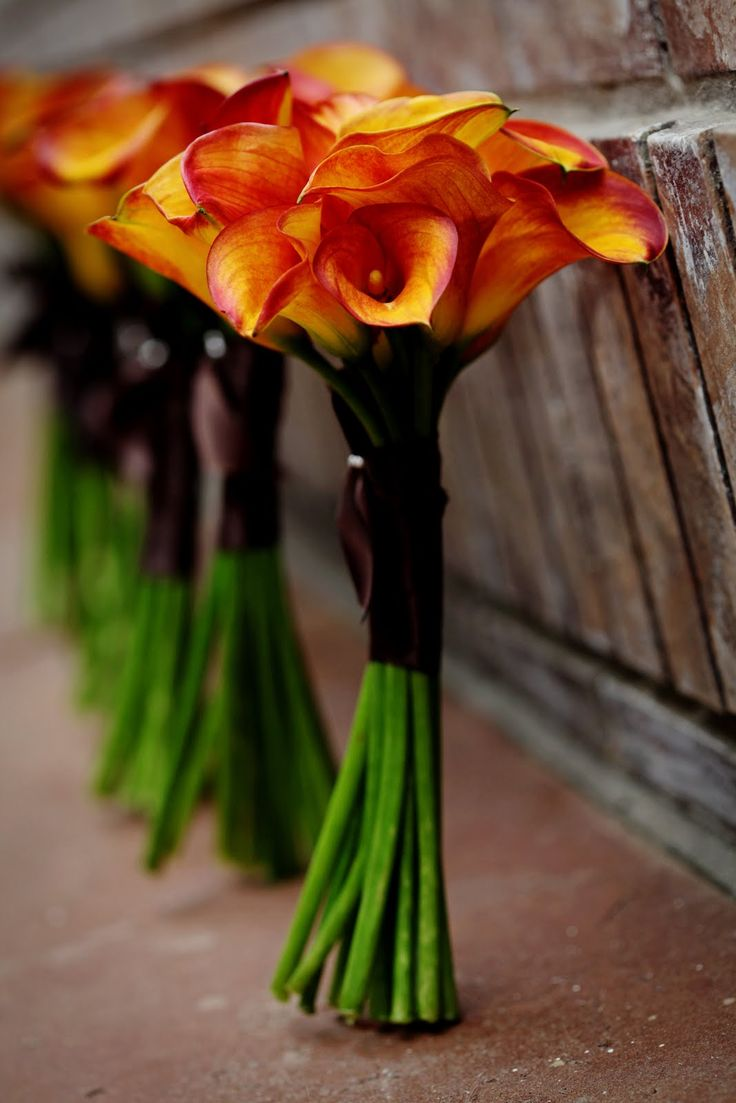 How Long Should Bridal Bouquet Stems Be : Best ideas about orange centerpieces on
