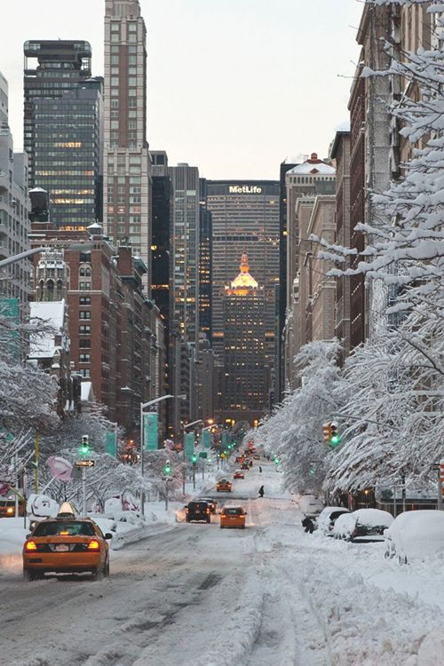 Park Avenue, NYC ~ Snow Storm. This is looking south from Park Avenue in the 50s/60s Streets. Sometimes people use their cross-country skis to get to their place of employment. Or regular skis. I've seen both.
