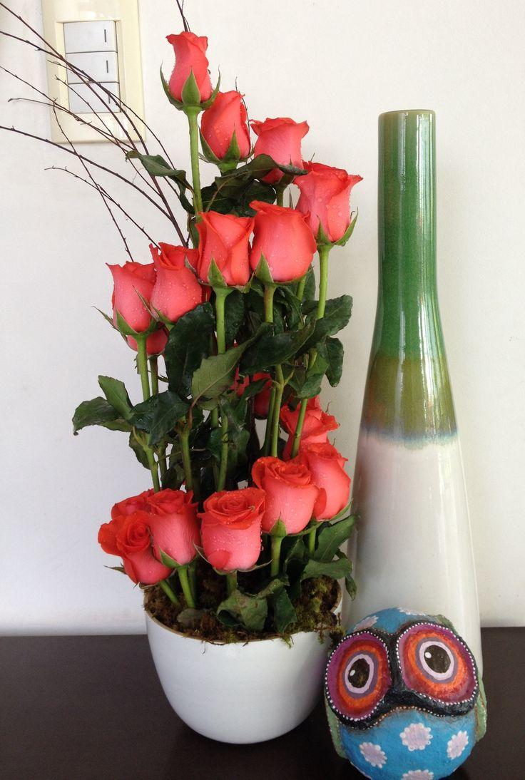 Hermosa escalera de rosas al cielo!❤️❤️