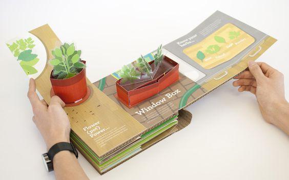 Beautiful pop- up book design: