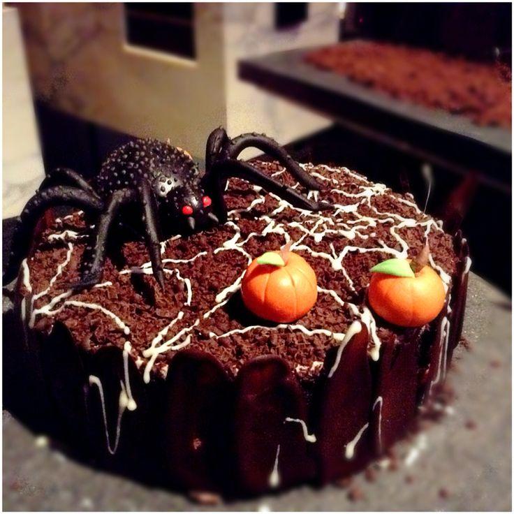 Spider Forest!!
