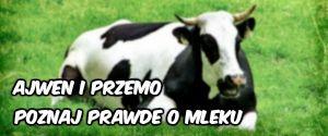 Ajwen i Przemo opowiadają o wpływie mleka i nabiału na ludzki organizm, o tym jak mleko jest produkowane i jak trafia na półki sklepowe.