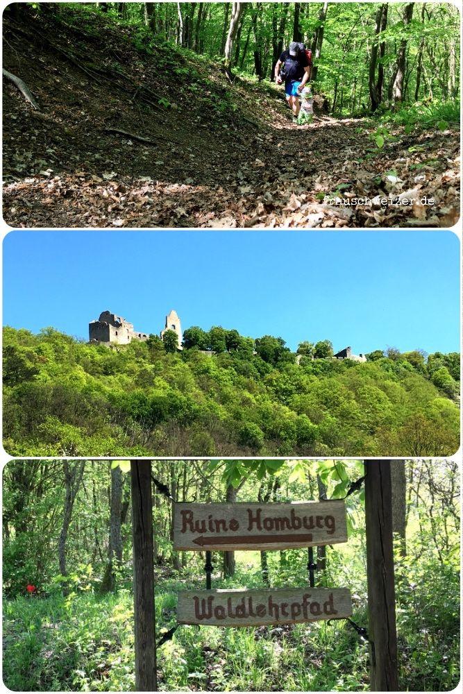Ruine Homburg- Wandern mit Kids im Main Spessart