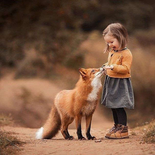 Friendship comes in all shapes and sizes. We become friends primarily because we empathise with feelings and physical being of each other… In other …