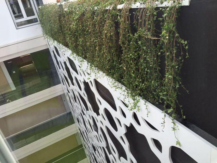 Trabajo de Jardines y Rincones Paisajismo