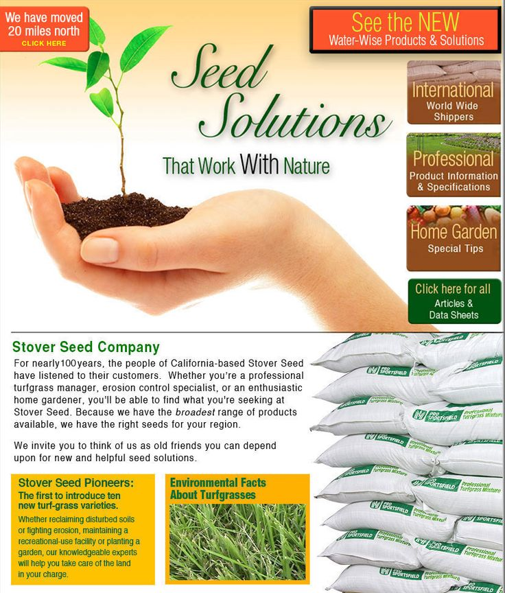 Stover Seed Company Stover Seed is a seeds company assisting professionals and homeowners with grass seeds products.