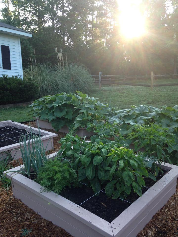 Making Vegetable Raised Garden Your Own