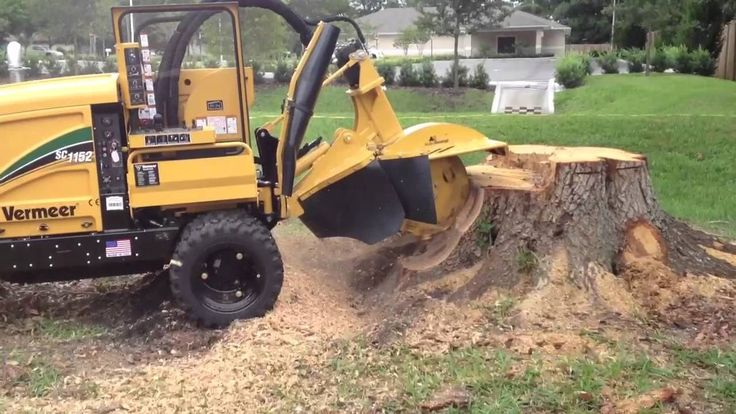 We can remove tree stumps of all sizes and leave your garden clear and tidy. #treelopping #treeremoval