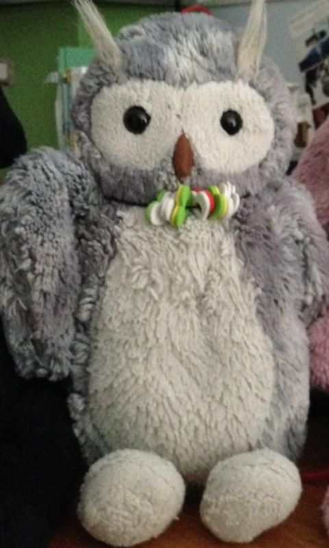 """Lost on 30 Jul. 2016 @ London St. and Euclid Ave, Toronto, ON. My 6-year-old daughter's favourite stuffed animal """"Owly"""" was riding in a bag and fell out we think on London St. near Euclid Ave. in Toronto. Owly is part of our family and we all miss her a lot es... Visit: https://whiteboomerang.com/lostteddy/msg/fs4en9 (Posted by Damon on 01 Aug. 2016)"""