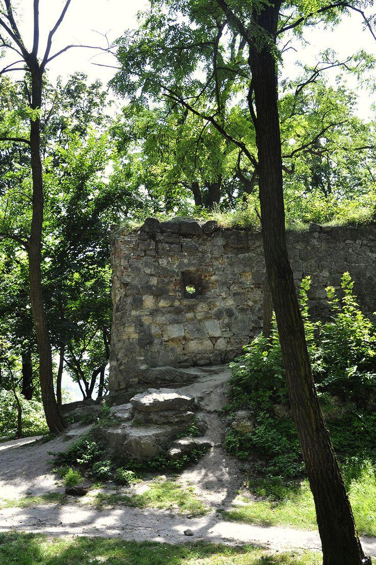 What left from Kazimierz III Wielki's castle (XIV), Lviv