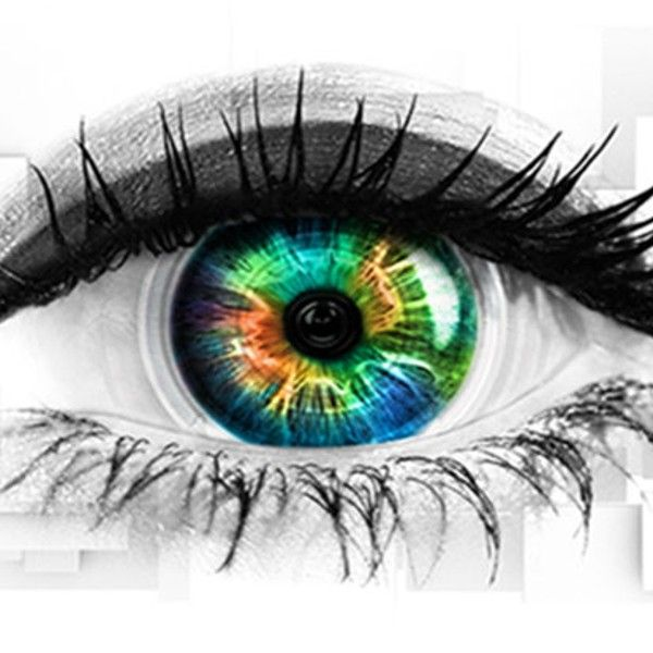 Who is going into the Celebrity Big Brother house?