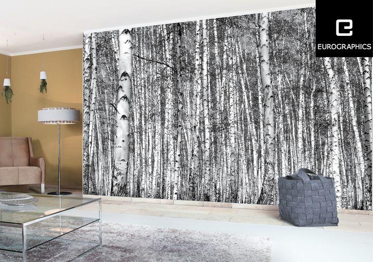 die besten 25 fototapete birkenwald ideen auf pinterest birkenwald fototapete natur und. Black Bedroom Furniture Sets. Home Design Ideas