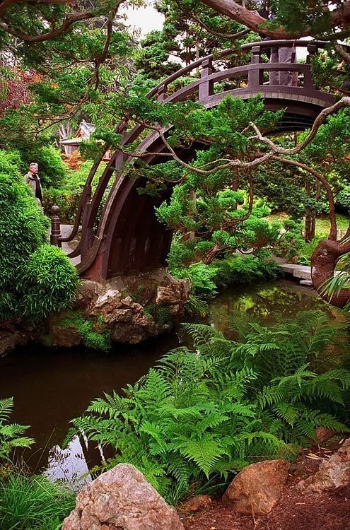 half moon bridge japanese tea garden golden gate park san francisco oohh i dont have to travel the whole way to japan to see this - Japanese Garden Bridge Drawing