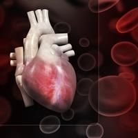 Researchers in Turkey found that fibromyalgia patients had significantly higher than normal platelet volume, which increases their risk of cardiovascu