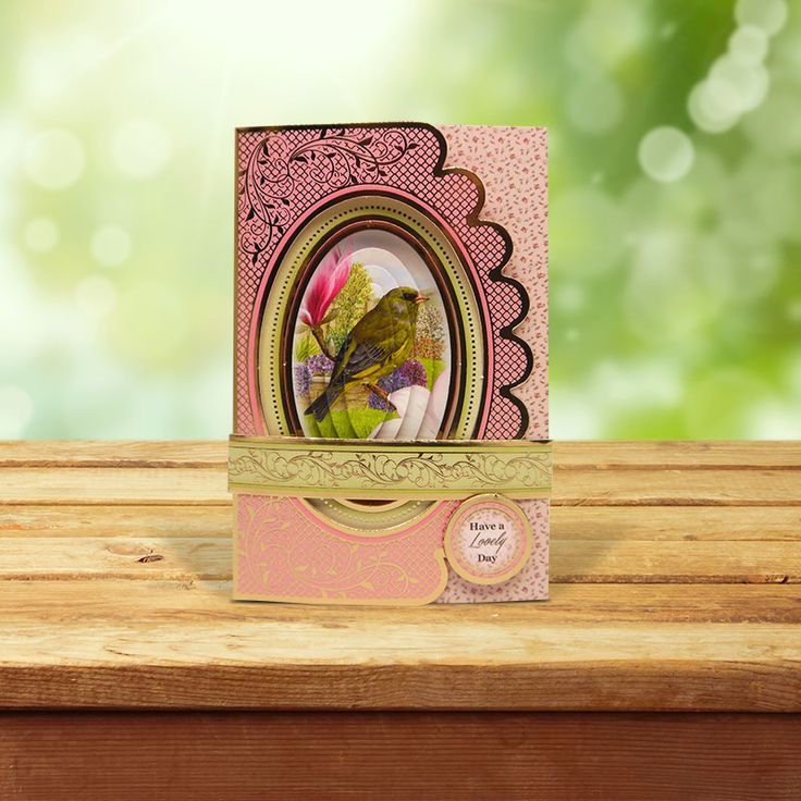 This card was made using the 'Pretty Paramount Wrap Cards' from the Birds of Britain Collection