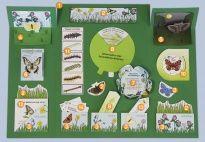 Projektplan Schmetterling-Lapbook