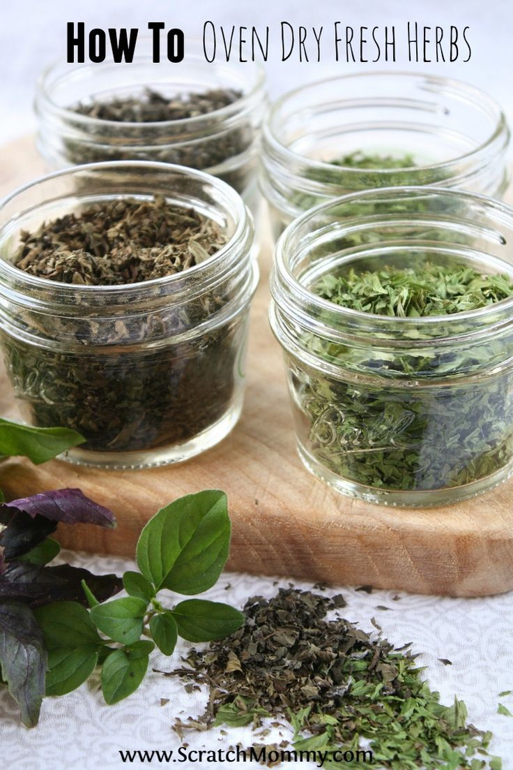 Drying homegrown fresh herbs requires no special equipment and tastes so much better than store bought! Read on to find out how to oven dry fresh herbs.