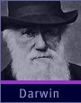 Darwin's Dangerous Idea is a pbs video that shows a live action movie of Darwin's career with interviews of modern scientists solving modern problems.
