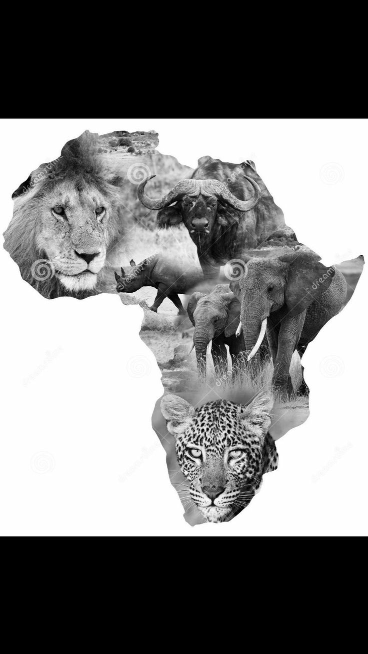 Africa big 5 tattoo design