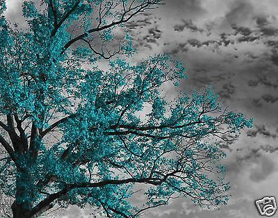 Bedroom Art Teal Gray Tree Sky Wall Art Home Interior