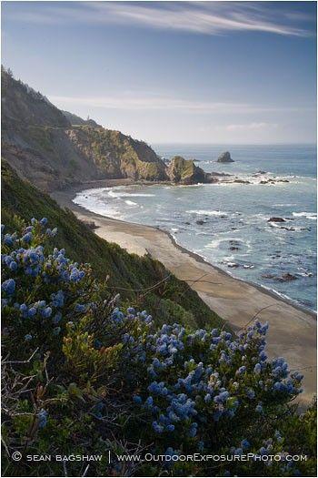 Northern California coast near Crescent City, Del Norte, California by Sean Bagshaw