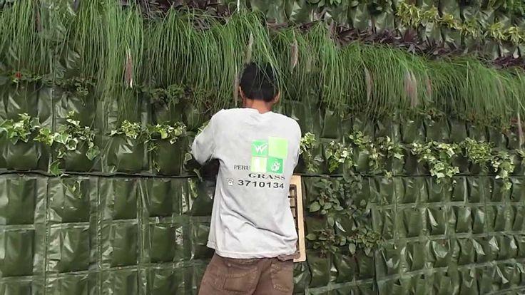 47 best jardines verticales images on pinterest vertical for Como realizar un jardin vertical