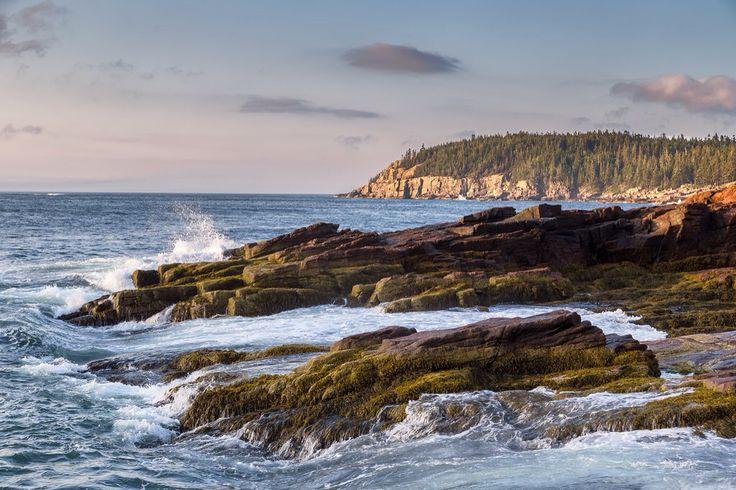 Crash ~ Acadia State Park, Maine