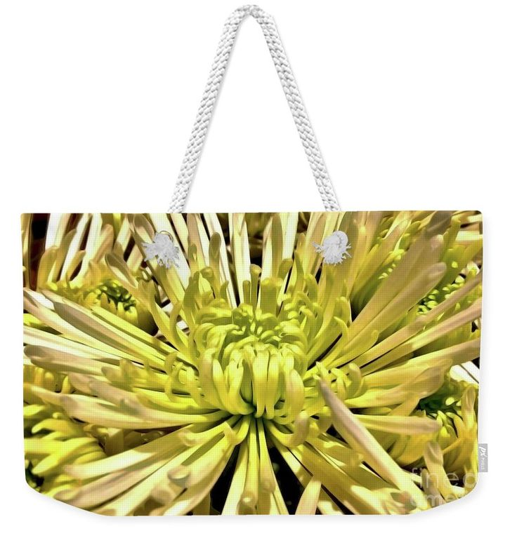 "Spider Mum Weekender Tote Bag (24"" x 16"") by Jasna Dragun.  The tote bag includes cotton rope handle for easy carrying on your shoulder.  All totes are available for worldwide shipping and include a money-back guarantee."