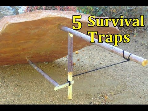 5 Survival Traps | How to make a survival trap | Survival in the forest - YouTube