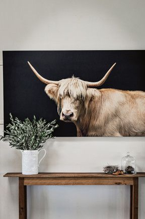 Silver Highlander by NSW photographer Tony Sheffield hangs above a bench made from old shearing shed floorboards by Zanna's mother. Remote Australian station family home