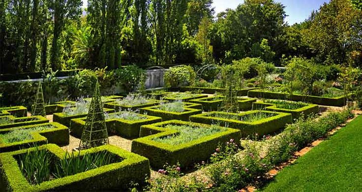 Stellenberg - Beautiful historic gardens in Kenilworth. Open every Friday, but contact nursery to confirm. Or annual open day in November.