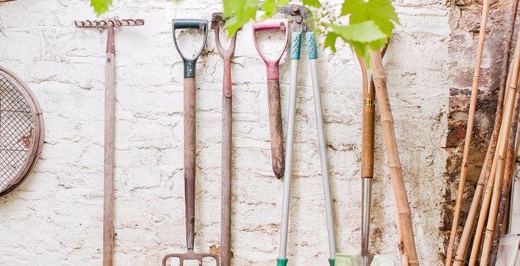 Reguli pentru curățenia din curți și grădini