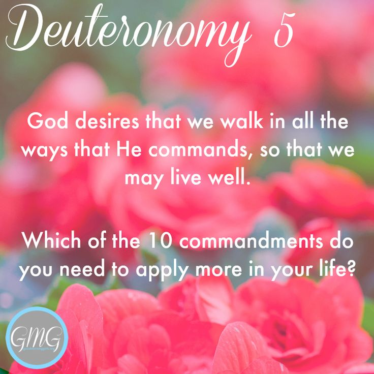 Cue the Confetti! It's time tobegin!!! I am so excited to begin the Book of Deuteronomy with you all! This is not an easy book of the Bible, so I'm proud of you for taking on this challenge!!! You can do this and we are here to cheer you on! {If you don't have your Journal yet – get it now – it's at its lowest price – just $8.09.} The Book of DeuteronomyOverview Deuteronomy is known as the long farewell speech of Moses and the second giving of the law. The nation of Israel had spent 40…
