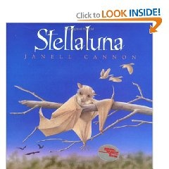 Stellaluna by Janell Cannon. One of our all time favorites!