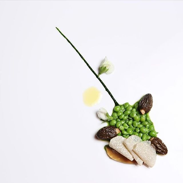 Sugar snap peas and morels by @aithor_zabala #TheArtOfPlating