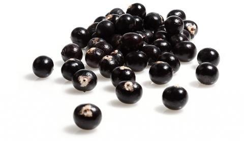 MONAVIE - BLOG DI INCARICATI ITALIANI: La bacca di acai - ingrediente fondamentale dei prodotti Monavie