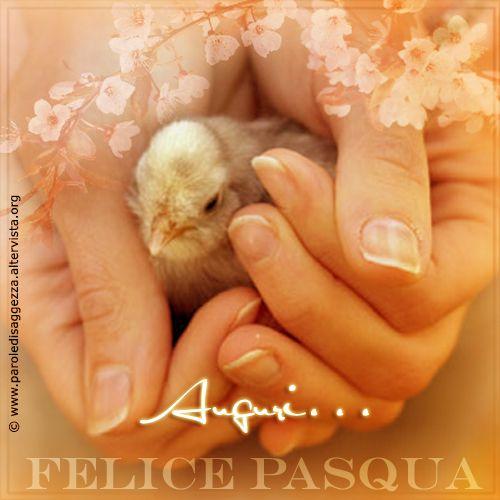 Auguri....Felice Pasqua! #auguri #pasqua #buonapasqua #cartolinevirtuali