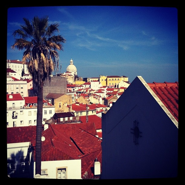 Roofs of the city #Lisboa