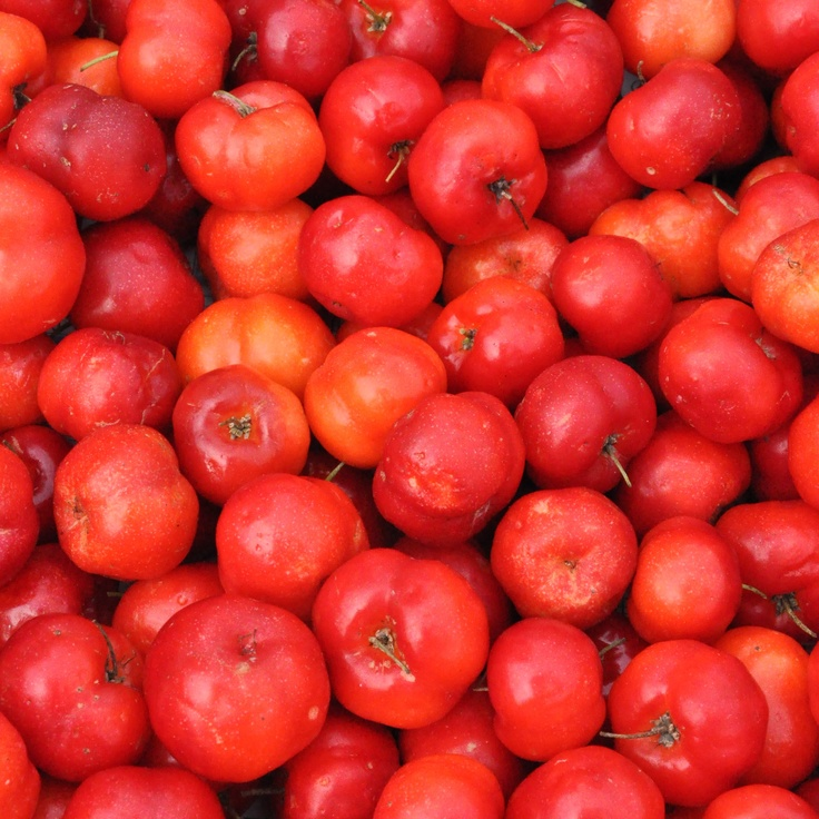 A single Acerola cherry has 100 percent of your Vitamin C for the day, which helps boost your body's production of collagen.  Talk about a super fruit!