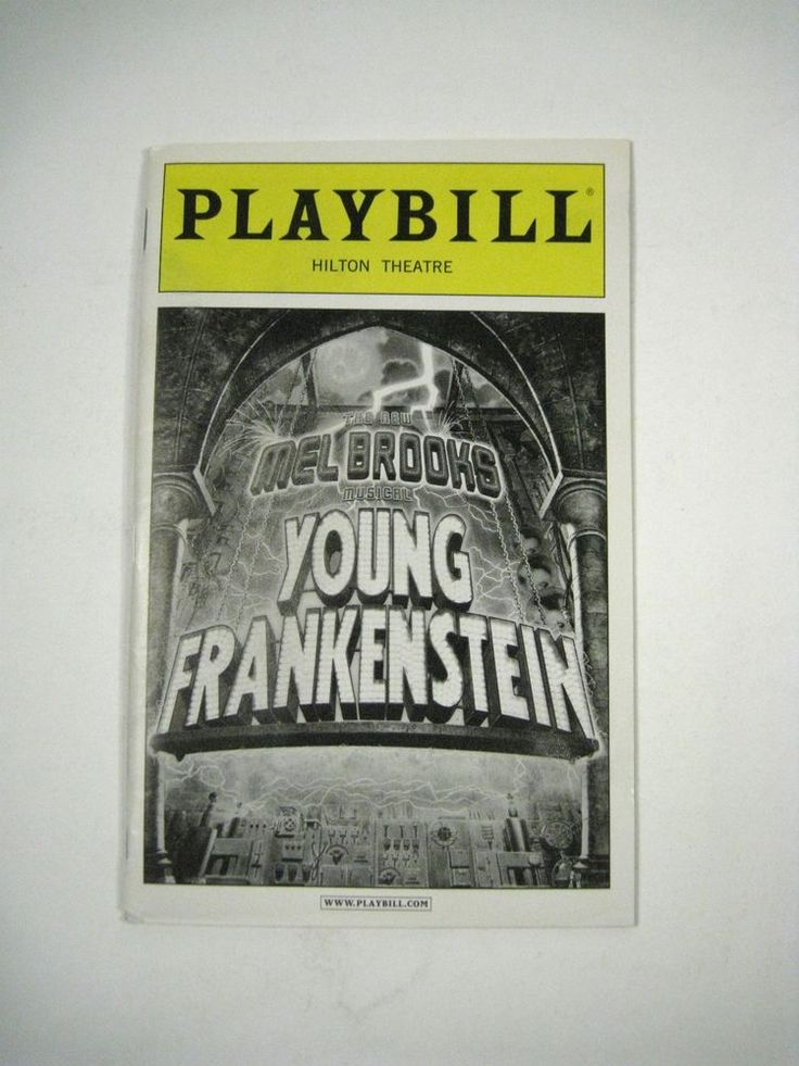 Mel Brooks Young Frankenstein Playbill 2008 Hilton Theatre Ticket Roger Bart